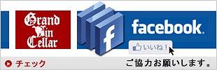 GVフェイスブック